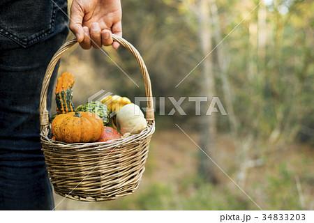 man with a basket full of pumpkinsの写真素材 [34833203] - PIXTA