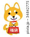 福袋 戌年 犬のイラスト 34842775