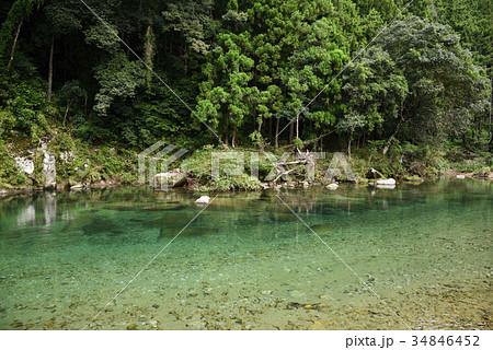高田川 高田第1自然プール(和歌山県新宮市) 34846452