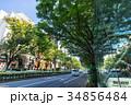東京 表参道 34856484