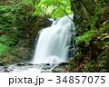 北軽井沢 大滝 滝の写真 34857075