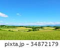 北海道 夏の青空と美瑛の丘 34872179