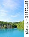 北海道 青い池 34872185