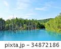 北海道 青い池 34872186