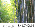 Famous bamboo grove at Arashiyama, Kyoto - Japan 34874284