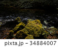 苔 岩 渓流の写真 34884007