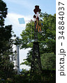 風車とマリンタワー 34884037