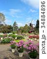ふなばしアンデルセン公園 アンデルセン公園 風車の写真 34884896