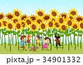 キッズ 子供 ひまわりのイラスト 34901332