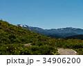 白山高山植物園 白山 植物園の写真 34906200