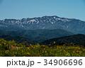 白山高山植物園 白山 植物園の写真 34906696