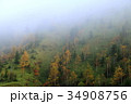 朝霧 34908756