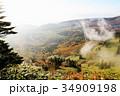 渋峠より芳ヶ平湿地群を望む 34909198