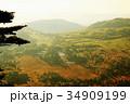 渋峠より芳ヶ平湿地群を望む 34909199