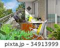 花 観葉植物 ベランダのイラスト 34913999