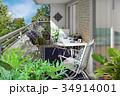 花 観葉植物 ベランダのイラスト 34914001