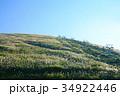 静岡県伊東市 大室山とリフト 34922446