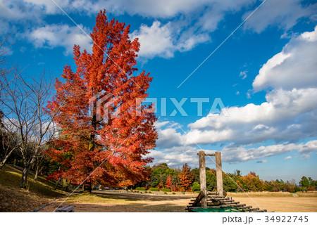 三重県民の森 赤いフウの木と遊具 34922745