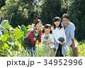 家族 農業体験 畑の写真 34952996