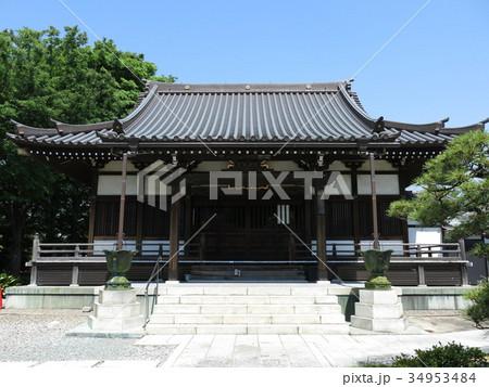 新緑が美しい葛飾区柴又の真勝院(本堂) 34953484