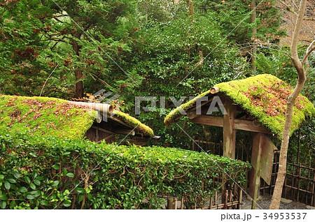茶室の門 34953537