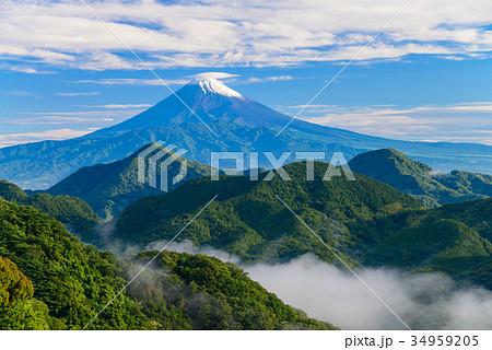 伊豆葛城山から富士山 梅雨の晴れ間 34959205