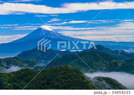 伊豆葛城山から富士山 梅雨の晴れ間 34959235