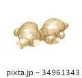 土生姜 34961343