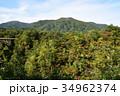紅葉 秋 鳴子峡の写真 34962374