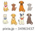 犬 複数6 34963437