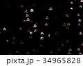 クラゲ 海月 水母の写真 34965828