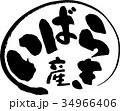 茨城産(産地2) 34966406