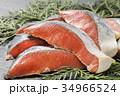 鮭 生鮭 秋鮭の写真 34966524