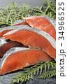 鮭 生鮭 秋鮭の写真 34966525