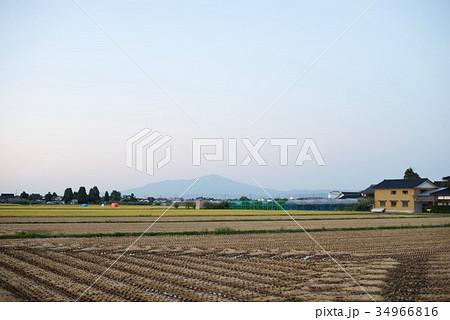 山形県の庄内平野 34966816