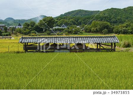 大阪府能勢の田園風景 34973855