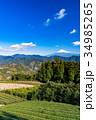 富士山 茶畑 静岡県の写真 34985265