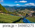 富士山 茶畑 静岡県の写真 34985275