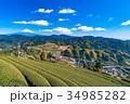 富士山 茶畑 静岡県の写真 34985282