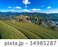 富士山 茶畑 静岡県の写真 34985287