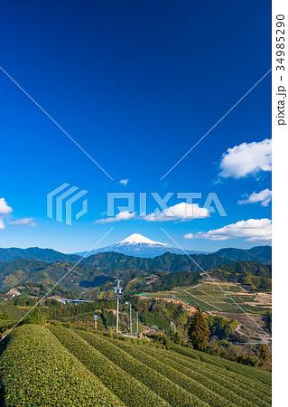 《静岡県》富士山と茶畑 34985290