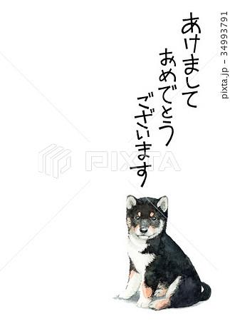 犬の賀詞入り素材黒柴犬タテ型 34993791