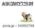 年賀状 戌年 子犬のイラスト 34993798