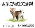 年賀状 戌年 子犬のイラスト 34993855