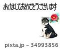 年賀状 犬 戌年のイラスト 34993856
