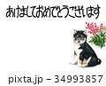 年賀状 犬 戌年のイラスト 34993857