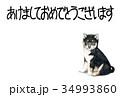 年賀状 犬 戌年のイラスト 34993860