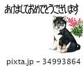年賀状 犬 戌年のイラスト 34993864