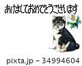 年賀状 犬 戌年のイラスト 34994604