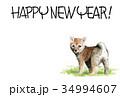 年賀状 犬 戌年のイラスト 34994607